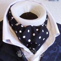 Аскот (шейный мужской платок)