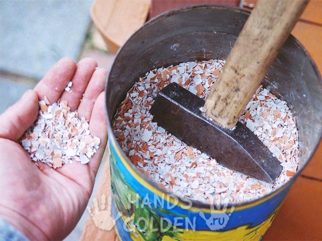 Скорлупу используют двумя способами — в сухом виде и жидком