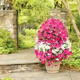 Как создать вертикальную цветочную башню